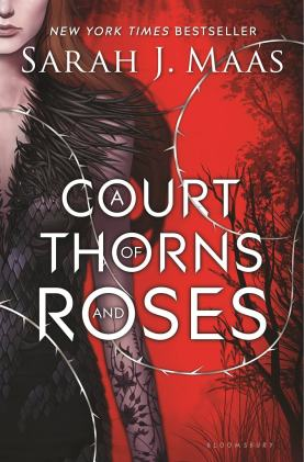 Check out this book review for A Court of Thorns and Roses by Sarah J. Maas